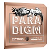 Ernie Ball EB-2080 PARADIGM X-LIGHT-PSB