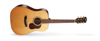 Cort Gold-D6 w/case