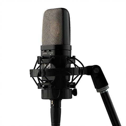 Warm Audio WA-14 - MIC
