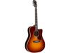 Gibson Hummingbird Rosewood Avant Garde 2018 Rosewood Burst