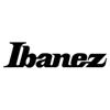 Ibanez AECDX