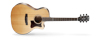 Cort GRAND REGAL GA5F-BW [NATURAL SATIN] (CF)