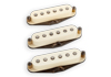 SET Antiquity for Strat Texas Hot b&n