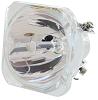AFX Light 2R-LAMP