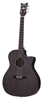 Schecter Deluxe Acoustic Satin See Thru Black