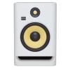 RP8G4WN White Noise Rokit