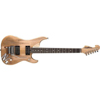 Washburn N4AUTHENTIC
