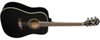 Washburn HD10SB