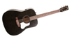 Art & Lutherie (042470) Americana m. Q1T Elect. Faded Black