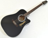 Takamine EF341DX, Dreadnought