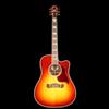 Gibson Acoustic Songwriter Cutaway (Burst) Rosewood Burst