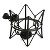Townsend Labs Sphere L22 Shock Mount
