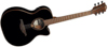 Lag Guitars TL118DCE-BLK