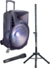 700W PORTABLE SPEAKER WITH LED EFFECT AND WIRELESS MICROPHONE