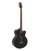 AB-455 Acoustic Bass, 5-string, black