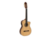 TB-100 Classical guitar, nature
