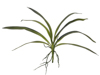 Orchid leaf (EVA), arificial, green, 45cm