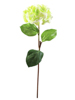 Hydragena spray, artificial, green, 76cm