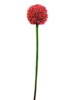 Allium spray, artificial, red, 55cm