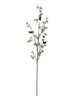 larch branch, PE, 100cm
