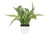 Boston fern in pot, artificial plant, 28 cm