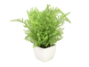 Forest fern in pot, artificial plant, 28 cm