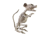 Halloween Skeleton Rat, 32x10x16cm
