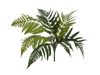 Lady Fern, artificial plant, 60cm
