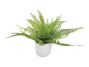 Fern bush in pot, artificial plant , 26 leaves, 27cm