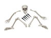 Halloween Skeleton, multipart