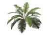 Sword Fern, artificial plant,70cm