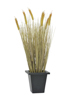 Europalms Wheat ready to harvest, artificial, 60cm
