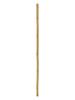 Europalms Bamboo tube, ¯=5cm, 200cm