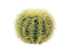 Barrel Cactus, artificial plant, green, 27cm