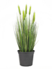 Europalms Wheat early summer, artificial, 60cm