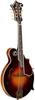 Gibson F-5 Fern Fern-Burst Mandolin | Fern Burst