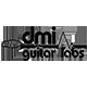 DMI Guitar Labs